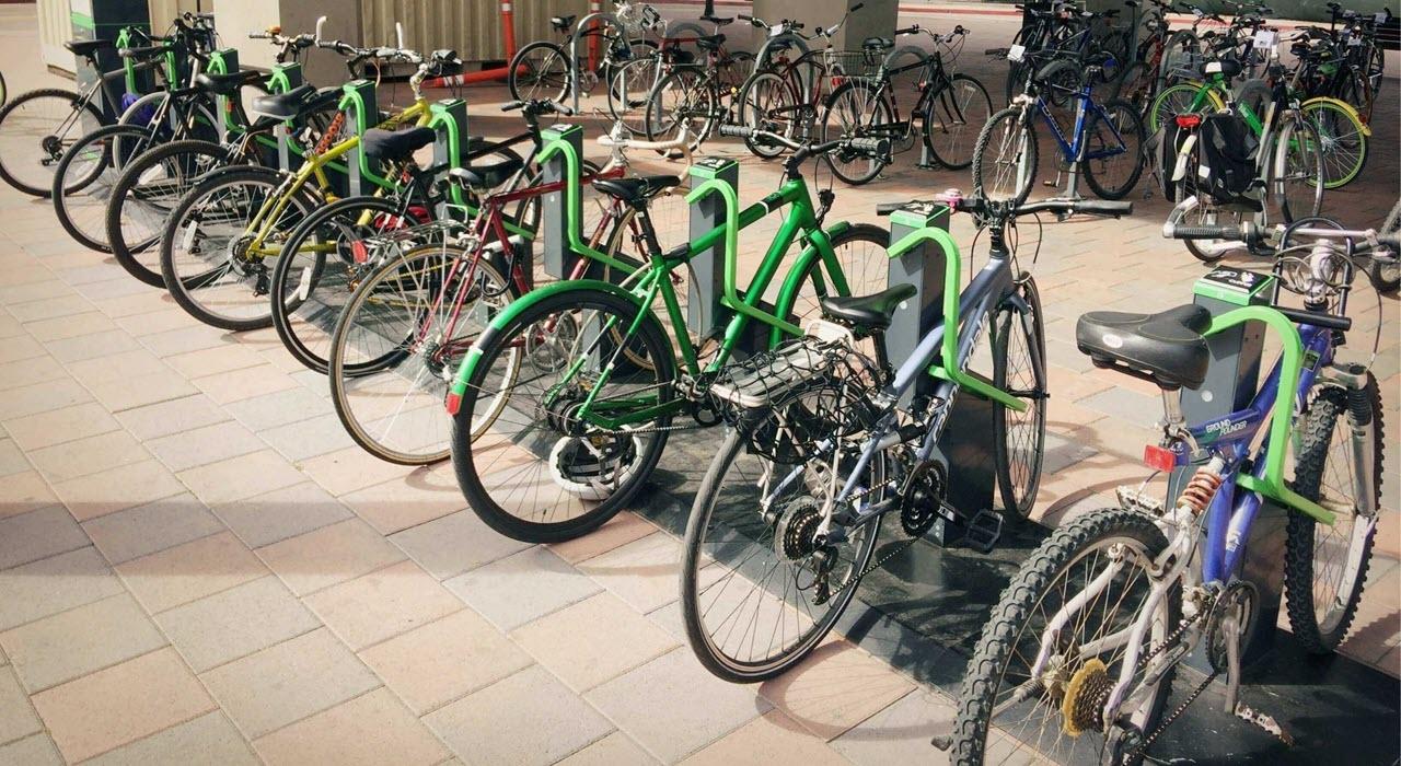 Her er docks er nok dyrere end cykler ;-)